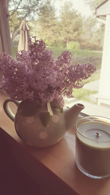 Lilacs from garden in teapot. From Almost Her Blog. Check it out!